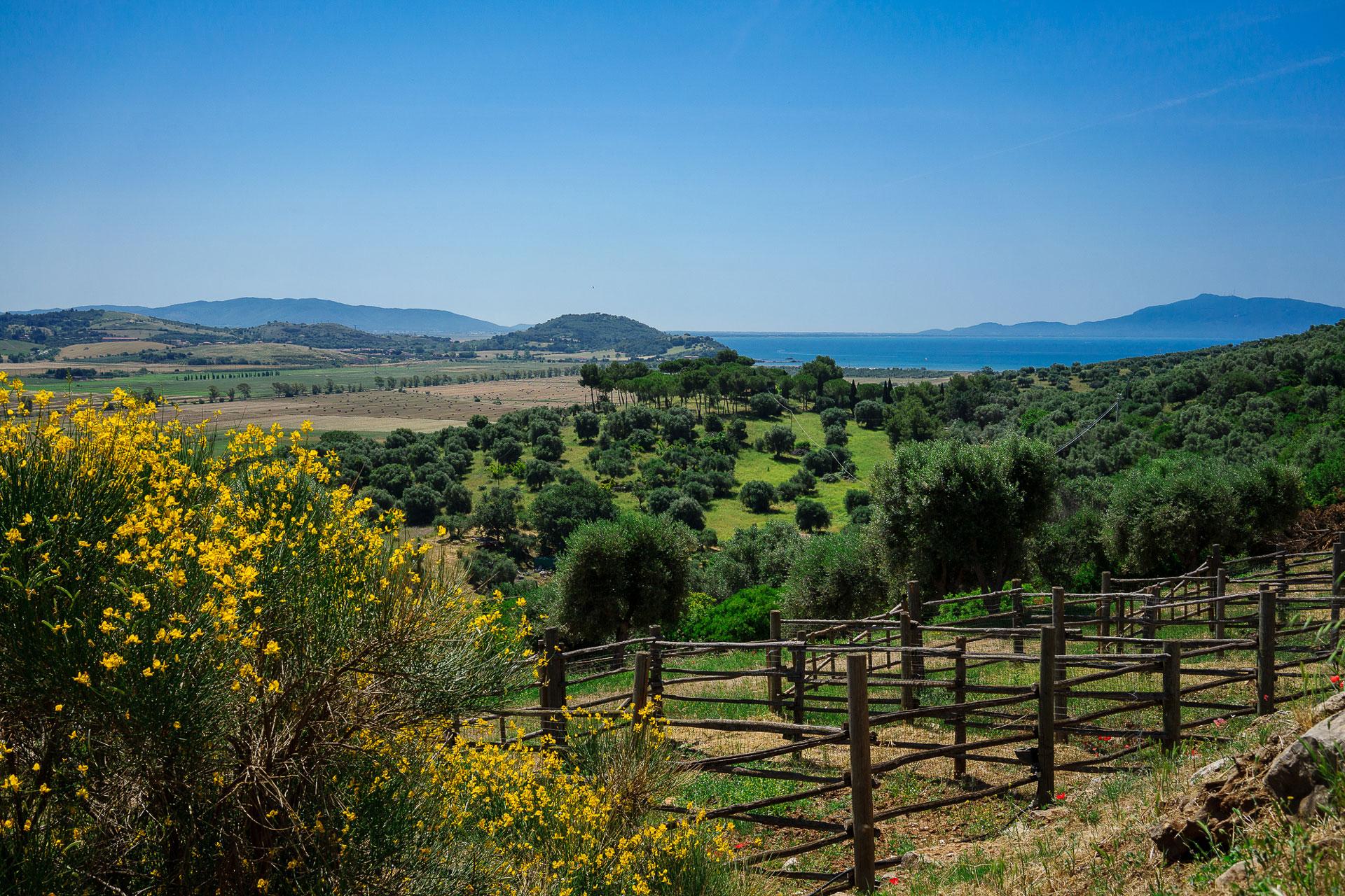 Agriturismo Parco della Maremma